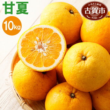 【ふるさと納税】 甘夏 10kg あまなつ 柑橘 果物 くだもの フルーツ 福岡県産 送料無料 【2020年4〜5月より順次発送】