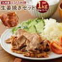 【ふるさと納税】九州産ブランド豚 とびうめ豚 生姜焼きセット