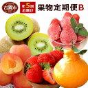【ふるさと納税】果物定期便B 5回発送 2020年1月発送開...