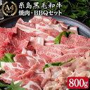 【ふるさと納税】A4ランク糸島黒毛和牛入り焼肉バーベキューセ...