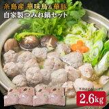 【ふるさと納税】自家製つみれ鍋セット(華豚、華味鳥)2,6kg 糸島ミートデリ工房 ACA100