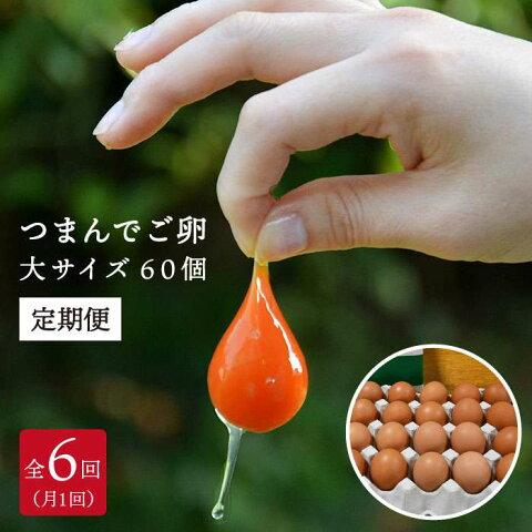 【ふるさと納税】全6回定期便 つまんでご卵 60個セット たまご/卵/鶏卵/玉子 AGA015
