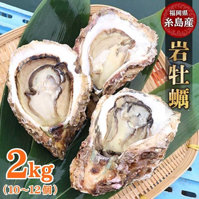 【ふるさと納税】糸島産岩牡蠣2kg(6~8個)[AKD005]