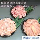 【ふるさと納税】 佐賀県唐津市産若鳥カット済もも肉&むね肉、