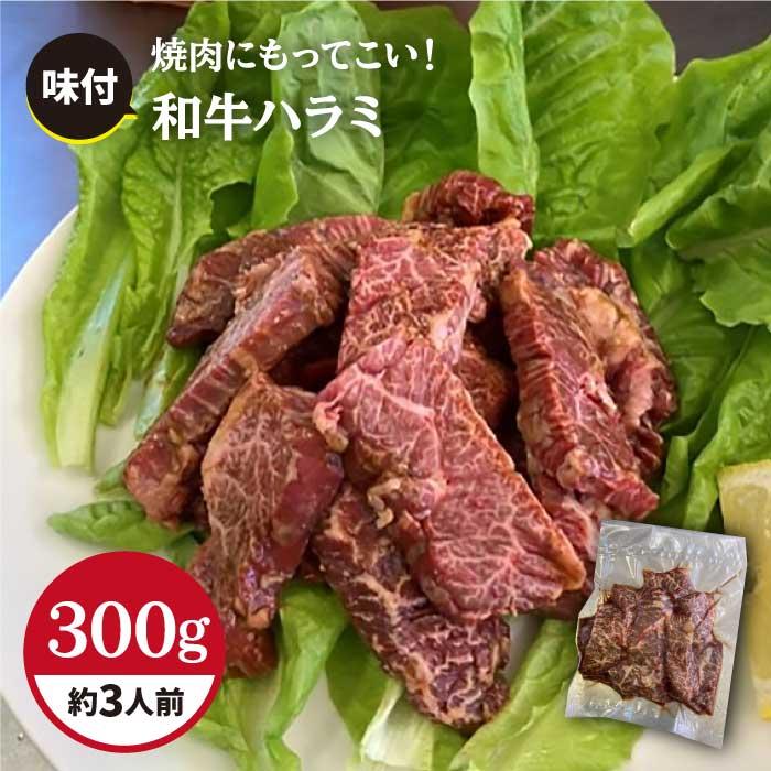 [食べやすい味付け]ホルモン専門店の和牛ハラミ300g (約3人前)[三田川ホルモン専門店]吉野ヶ里町
