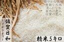 【ふるさと納税】【令和元年度産】9年連続特A受賞「さがびより...