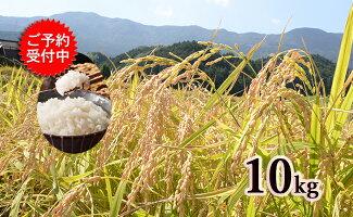 有田の清らかな水で育った棚田米 白米10kg 梅崎農園