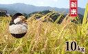 K14-1【ふるさと納税】令和元年産 有田の清らかな水で育っ...