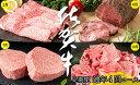 N100-10【ふるさと納税】贅沢な佐賀牛 プレミアム定期便
