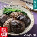 【ふるさと納税】E-007 【厳選された極上椎茸】森のアワビと称される対馬原木特上乾燥しいたけ!