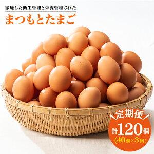 【ふるさと納税】※3回定期便※【くさみゼロ!コクある卵】徹底した衛生管理と栄養管理された「まつもとたまご」Lサイズ40個入り<松本養鶏場>CCD002