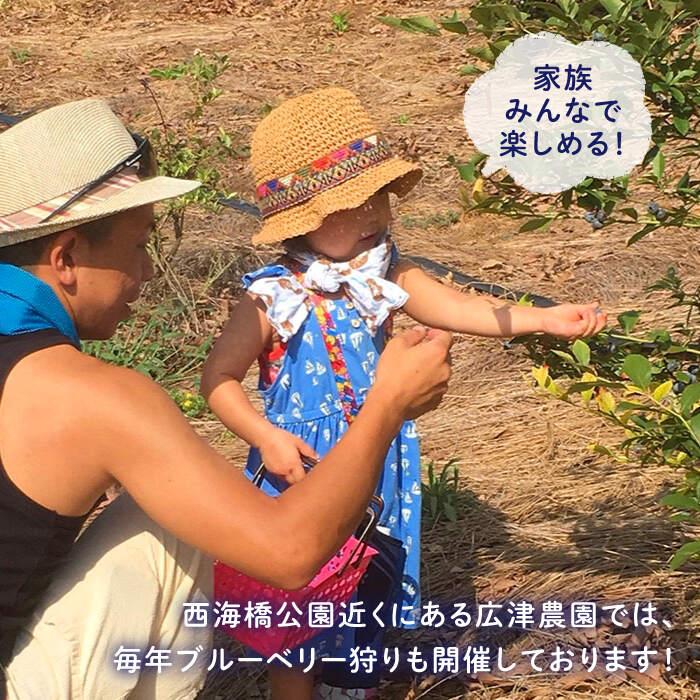 【ふるさと納税】【栽培期間中農薬不使用】完熟ブルーベリー1kg<広津農園>[CBN008]
