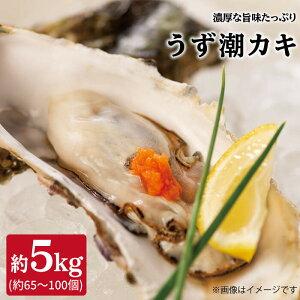 【ふるさと納税】【約5kg(約50個)】うず潮カキ<西彼漁協>[CBZ002]