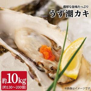 【ふるさと納税】【約10kg(約100個)】うず潮カキ<西彼漁協>[CBZ003]