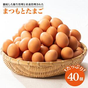 【ふるさと納税】【くさみゼロ!コクある卵】徹底した衛生管理と栄養管理された「まつもとたまご」Lサイズ40個入り<松本養鶏場>CCD001