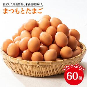 【ふるさと納税】【くさみゼロ!コクある卵】徹底した衛生管理と栄養管理された「まつもとたまご」Lサイズ60個入り<松本養鶏場>CCD005