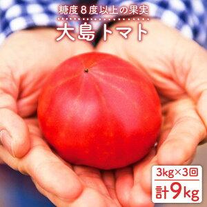 【ふるさと納税】【限定100セット】大島トマト計9kg(3kg×3回定期便)<大島造船所農産G>[CCK006]