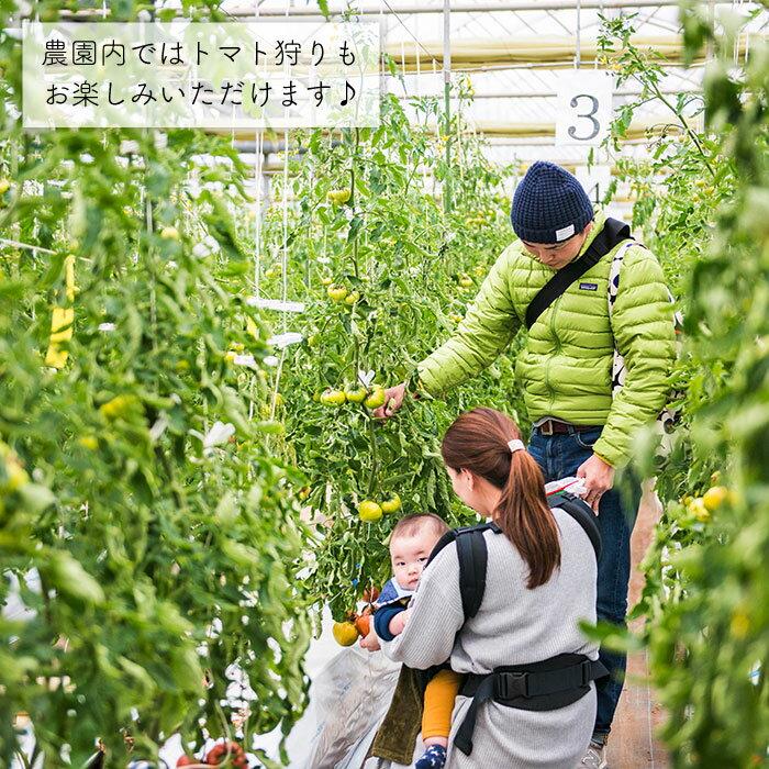 【ふるさと納税】【愛情たっぷり。】大島トマトジュース(1L×2本)<大島造船所農産G>[CCK010]