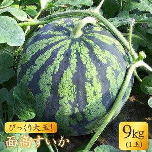 【ふるさと納税】【びっくり大玉】面高すいか9kg以上×1玉<太田幸男>[CCN004]