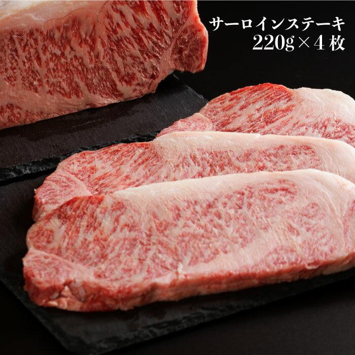 【ふるさと納税】BAJ007長崎和牛ヒレステーキ・サーロインステーキ食べ比べセット