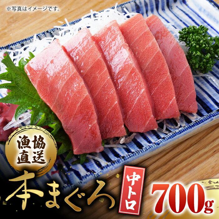 【ふるさと納税】BAK012長崎県産本マグロ中トロ700g【大村湾漁業協同組合】