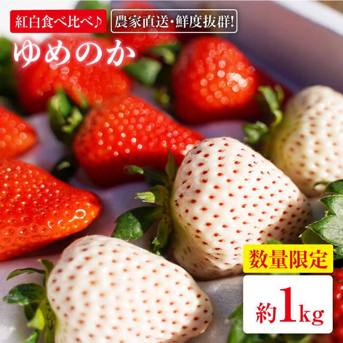 【ふるさと納税】【紅白食べ比べ♪】スミ兄さんの長崎県産「ゆめのか」いちご1.0kg[BBL003]