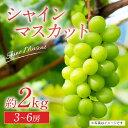 【ふるさと納税】【2021年8月中旬より順次発送】熊本県産