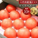 【ふるさと納税】はちべえ塩トマト ロイヤルセレブ 1ケ−ス 9個〜16個 糖度10度以上 はちべえ 塩トマト ...