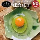 【ふるさと納税】球磨球子 60個入 九州産 熊本県産 人吉 鶏卵 卵 卵焼き たまご 焼酎粕 濃厚 送料無料