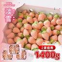 【ふるさと納税】 いちご イチゴ 苺 白いちご 淡雪 家庭用 1400g 熊本 玉名  送料無料