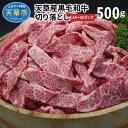 【ふるさと納税】天草産 黒毛和牛 焼肉用 ロース カルビ 切り落とし 500g