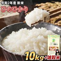 【ふるさと納税】令和2年産 新米 ひのひかり10kg 熊本県産 白米10kg+国産雑穀米 令和2年 精米 玉東町《出荷時期をお選びください》