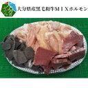 【ふるさと納税】大分県産黒毛和牛MIXホルモン A01080【大分県大分市】