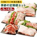 【ふるさと納税】【定期便 年3回】大分県産 ブランド豚 米の...
