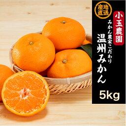 【ふるさと納税】【予約受付開始】国東みかん5kg/小玉農園