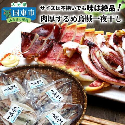 【ふるさと納税】サイズは不揃いでも味は絶品!肉厚するめ烏賊...