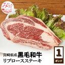 【ふるさと納税】宮崎県産 リブロースステーキ 黒毛和牛 450g 国産 ステーキ用 1ポンド