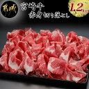 【ふるさと納税】都城産宮崎牛赤身切落し1.2kg - 牛肉 A4ランク以上/4等級以上 ウデ・もも肉中心の切り落とし1.2キロ 肉質が柔らか