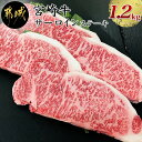 【ふるさと納税】都城産宮崎牛サーロインステーキ1.2kg -