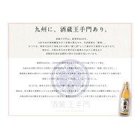 【ふるさと納税】酒蔵王手門献上銀滴1800ml(パック)×6本セット