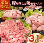 【ふるさと納税】肉≪小分けで便利≫豚&鶏(モモ・ムネ)大満足セット(合計3.1kg)