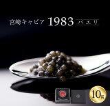 【ふるさと納税】宮崎キャビア1983 バエリ(10g)