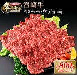 【ふるさと納税】肉≪A4等級等級以上≫宮崎牛赤身モモ・ウデ焼肉用セット(計800g)