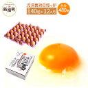 【ふるさと納税】児湯養鶏自慢の卵 計480個(40個×12回) 12ヶ月定期便 冷蔵 送料無料 たまご 国産 - 宮崎県新富町