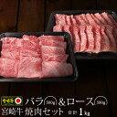 【ふるさと納税】バラ&ロース 焼肉セット 宮崎牛 合計1kg...