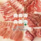 【ふるさと納税】ブランド豚宮崎県産豚焼肉セット約2.4kg大容量豚肉ヒレバラ肩ロース下ローススペアリブ焼肉タレ詰め合わせ送料無料