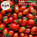 【ふるさと納税】予約受付 完熟ミニトマト アイコトマト 2kg 国産 野菜 数量限定 2019年1月下旬〜5月までに順次発送予定 送料無料
