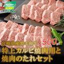 【ふるさと納税】宮崎県産黒毛和牛 特上カルビ焼肉用500gと