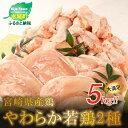 【ふるさと納税】<宮崎県産鶏 やわらか若鶏2種5kg> K1...