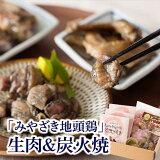 【ふるさと納税】人気のみやざき地頭鶏生肉&炭火焼セット
